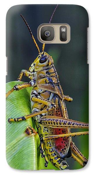 Lubber Grasshopper Galaxy Case by Richard Rizzo