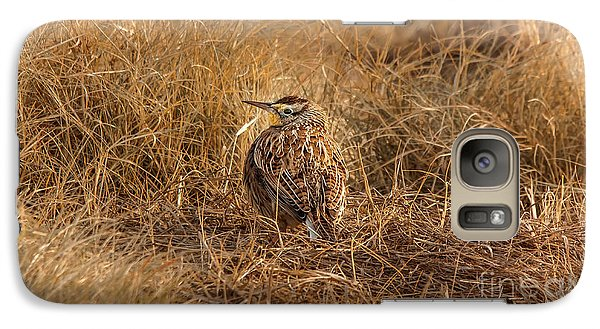Meadowlark Hiding In Grass Galaxy Case by Robert Frederick