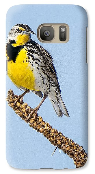 Meadowlark On Mullein Stalk Galaxy Case by Stephen Johnson