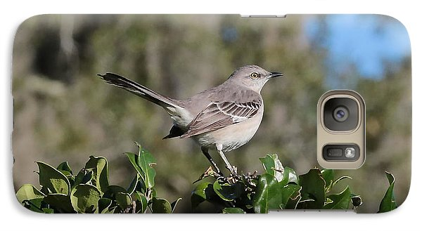 Northern Mockingbird Galaxy S7 Case by Carol Groenen