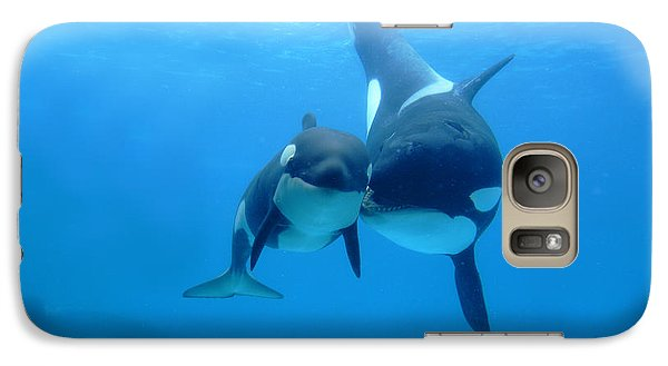 Orca Orcinus Orca Mother And Newborn Galaxy Case by Hiroya Minakuchi