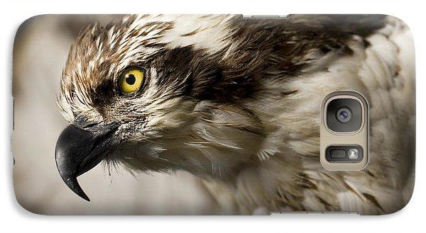 Osprey Galaxy Case by Adam Romanowicz