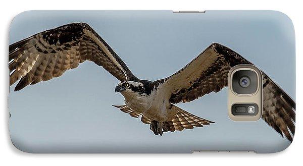 Osprey Flying Galaxy Case by Paul Freidlund