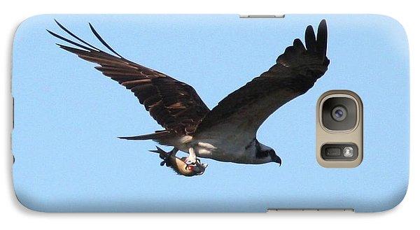 Osprey With Fish Galaxy Case by Carol Groenen