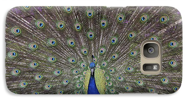 Peacock Display Galaxy Case by Tim Gainey
