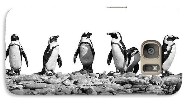 Penguins Galaxy Case by Delphimages Photo Creations