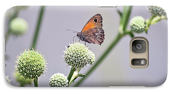 Perched Butterfly No. 255-1 Galaxy Case by Sandy Taylor