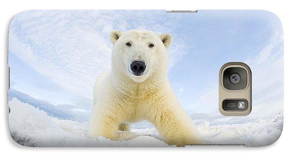 Polar Bear  Ursus Maritimus , Curious Galaxy S7 Case by Steven Kazlowski