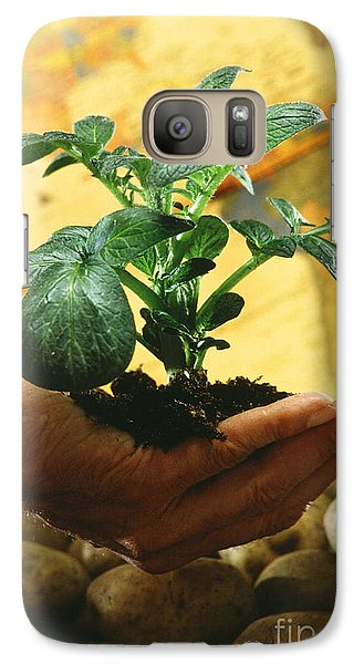 Potato Plant Galaxy S7 Case by Science Source