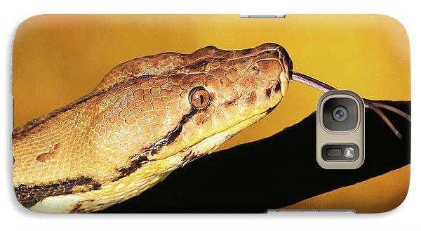 Python Galaxy Case by Donna Kennedy