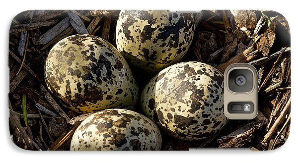 Quartet Of Killdeer Eggs By Jean Noren Galaxy Case by Jean Noren