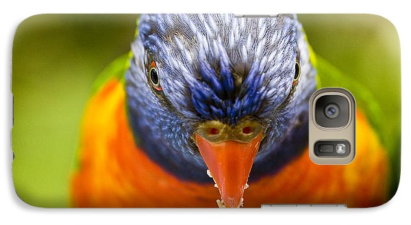 Rainbow Lorikeet Galaxy Case by Avalon Fine Art Photography