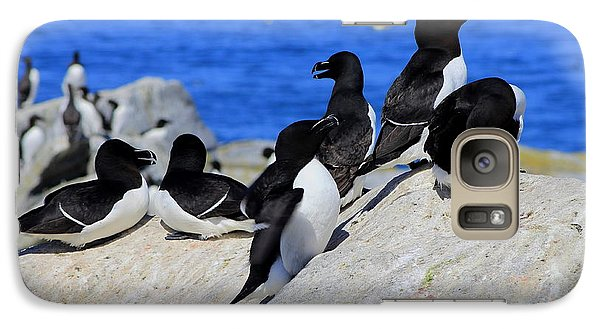 Razorbills Galaxy Case by John Burk