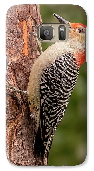 Red Bellied Woodpecker 3 Galaxy S7 Case by Jim Hughes