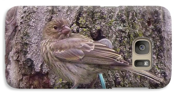 Red Crossbill Female  Indiana  Summer Galaxy S7 Case by Rory Cubel