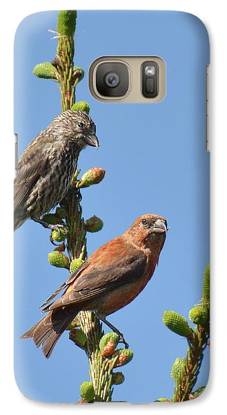 Red Crossbill Pair Galaxy S7 Case by Alan Lenk