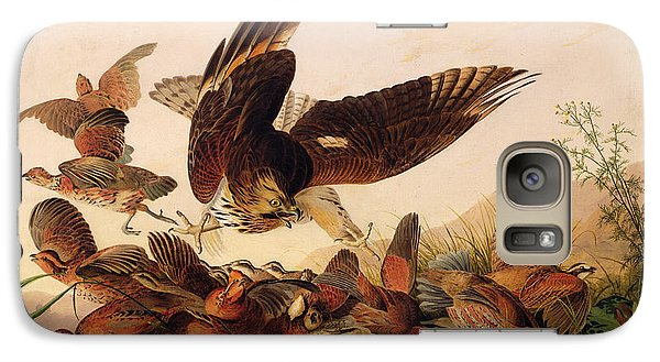 Red Shouldered Hawk Attacking Bobwhite Partridge Galaxy Case by John James Audubon
