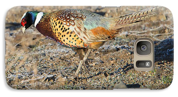 Ring-necked Pheasant Rooster Galaxy S7 Case by Mike Dawson