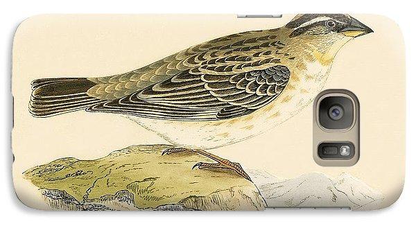 Rock Sparrow Galaxy Case by English School
