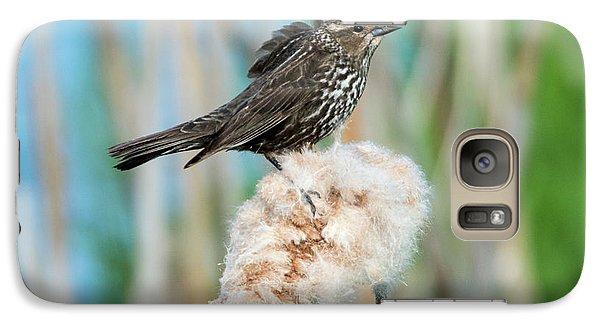 Ruffled Feathers Galaxy S7 Case by Mike Dawson