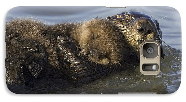 Sea Otter Mother With Pup Monterey Bay Galaxy Case by Suzi Eszterhas