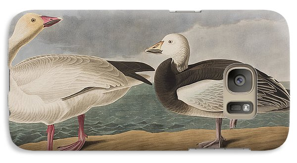Snow Goose Galaxy S7 Case by John James Audubon