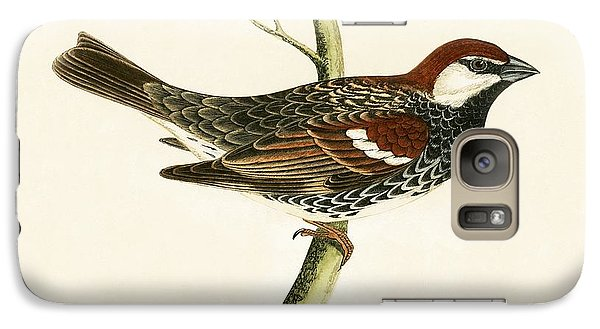 Spanish Sparrow Galaxy S7 Case by English School
