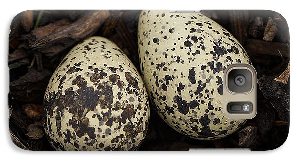 Speckled Killdeer Eggs By Jean Noren Galaxy Case by Jean Noren