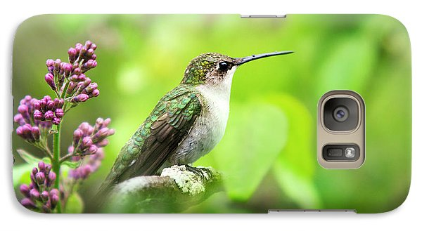 Spring Beauty Ruby Throat Hummingbird Galaxy Case by Christina Rollo