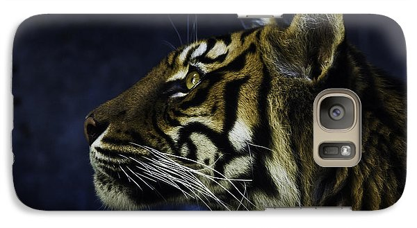 Sumatran Tiger Profile Galaxy S7 Case by Avalon Fine Art Photography