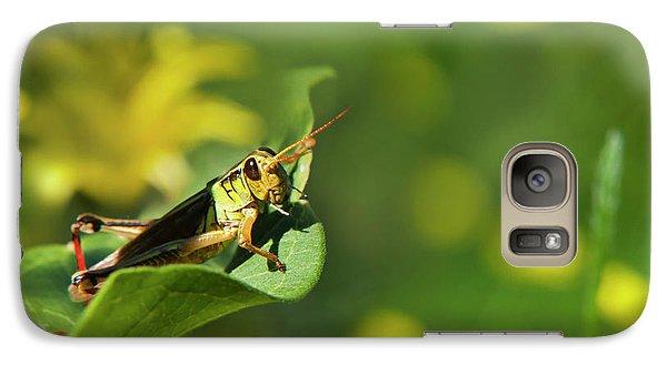 Green Grasshopper Galaxy Case by Christina Rollo