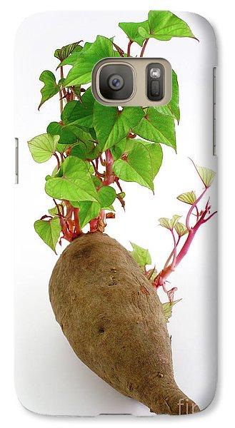 Sweet Potato Galaxy S7 Case by Gaspar Avila