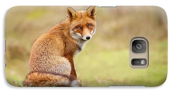 That Look - Red Fox Male Galaxy S7 Case by Roeselien Raimond