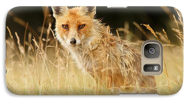 The Catcher In The Grass - Wild Red Fox Galaxy S7 Case by Roeselien Raimond