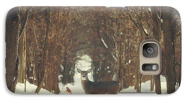 The Forest Of Snow White Galaxy Case by Carrie Ann Grippo-Pike