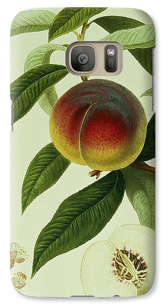 The Galande Peach Galaxy S7 Case by William Hooker