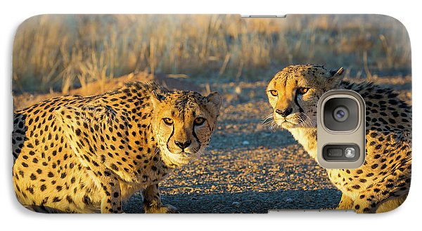 Two Cheetahs Galaxy S7 Case by Inge Johnsson