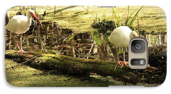Two Ibises On A Log Galaxy S7 Case by Carol Groenen