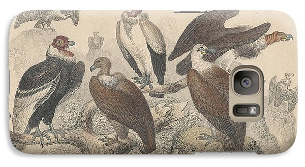 Vultures Galaxy Case by Oliver Goldsmith