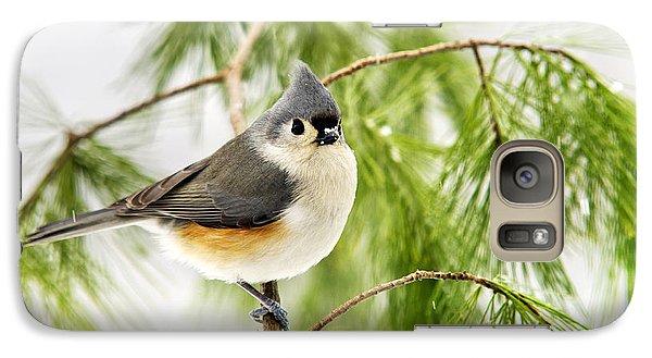 Winter Pine Bird Galaxy S7 Case by Christina Rollo