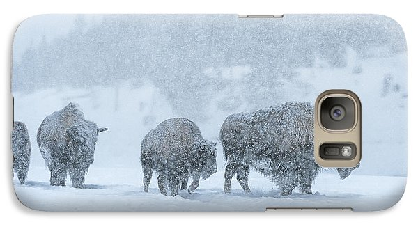 Winter's Burden Galaxy Case by Sandra Bronstein