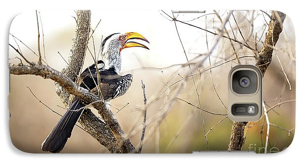 Yellow-billed Hornbill Sitting In A Tree.  Galaxy S7 Case by Jane Rix