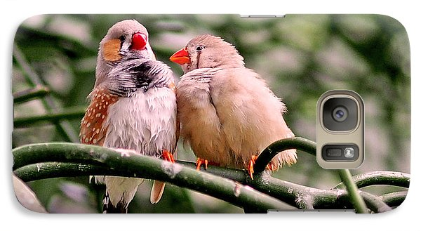 Zebra Finch Colloquy Galaxy Case by Rona Black