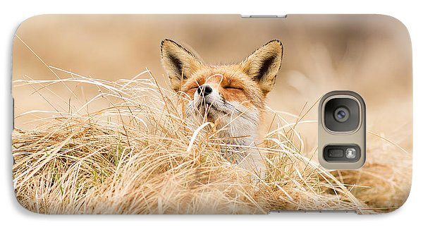 Zen Fox Series - Zen Fox 2.7 Galaxy Case by Roeselien Raimond