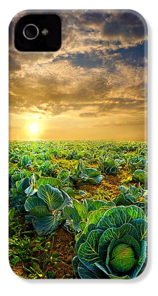 Fall Harvest IPhone 4 / 4s Case by Phil Koch