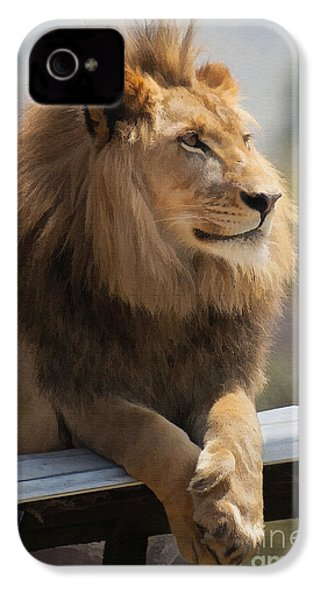 Majestic Lion IPhone 4 / 4s Case by Sharon Foster