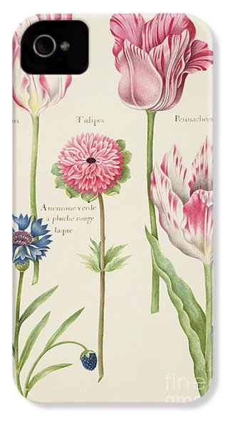 Tulips IPhone 4 / 4s Case by Nicolas Robert