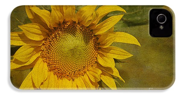Sunflower IPhone 4 / 4s Case by Cindi Ressler
