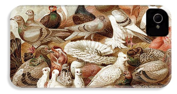 1870 Domestic Fancy Pigeon Breeds Darwin IPhone 4 / 4s Case by Paul D Stewart