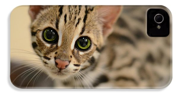 Asian Leopard Cub IPhone 4 / 4s Case by Laura Fasulo